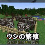 牛を連れてくる方法・繁殖させる方法