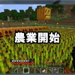 農作業開始!農業のやり方、畑の作り方