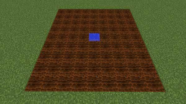 簡単な畑の大きさ