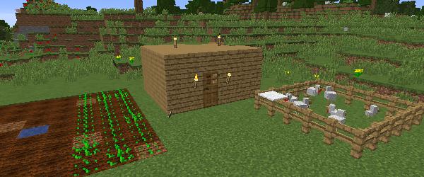 畑とニワトリのフェンス