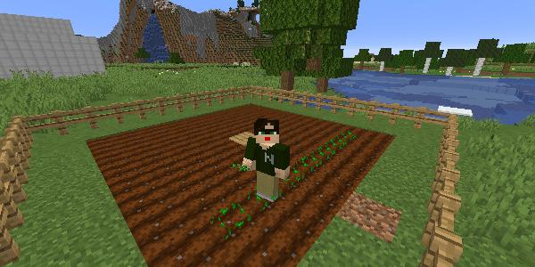 まっすぐ植える方法
