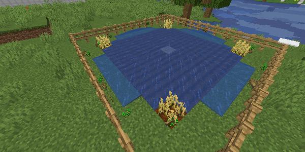 水流で収穫
