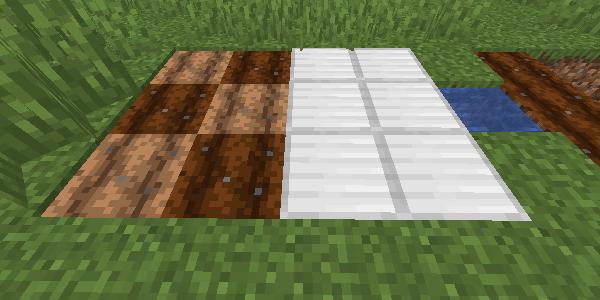 鉄ブロックの先の耕地