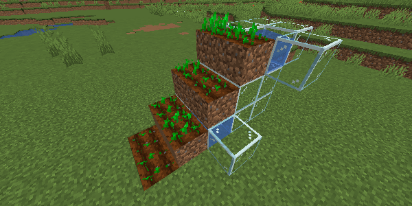 階段状の畑