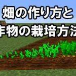 農業を始めよう!畑の作り方と作物6種類の育て方を解説します