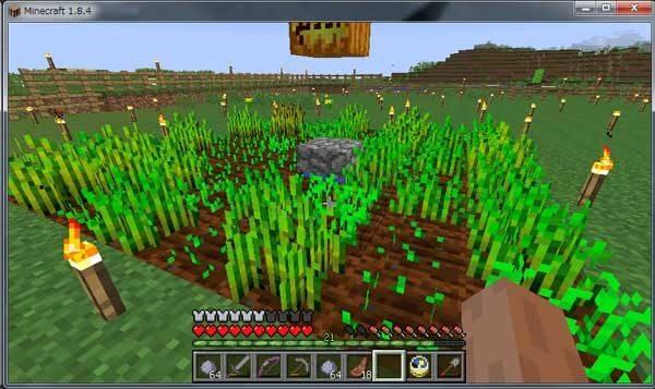 簡単な小麦畑