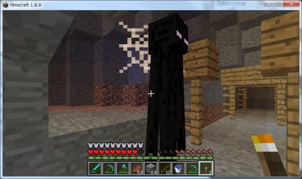 クモの巣にひっかかるエンダーマン