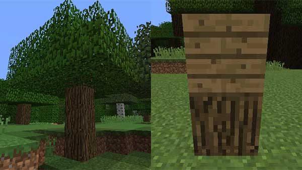 オークの木と、オークの木材、オークの原木