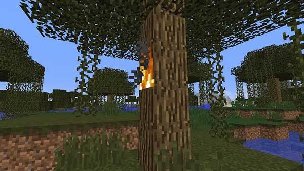 木の側面の炎