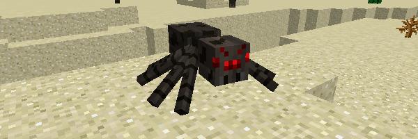 昼間のクモ