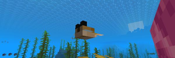 海の中を泳ぐフグ