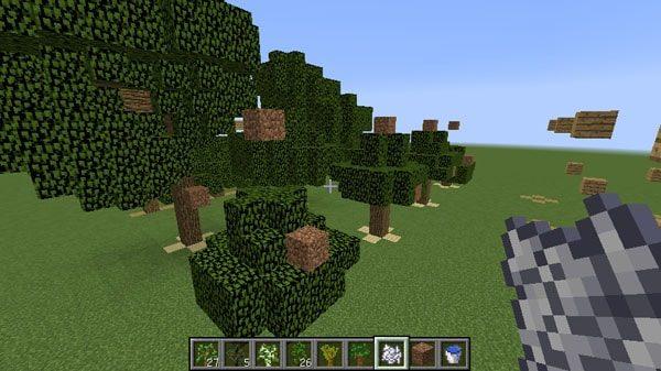 制限ブロックを貫通して成長するオークの木