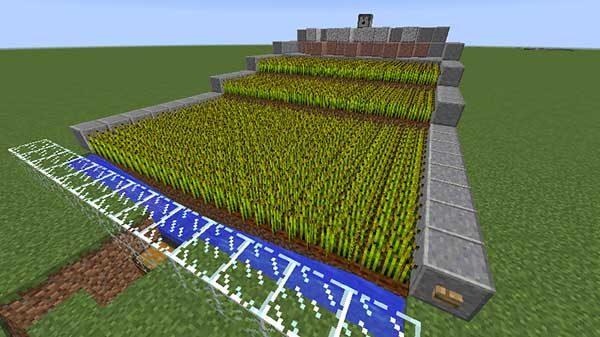 小麦自動収穫装置
