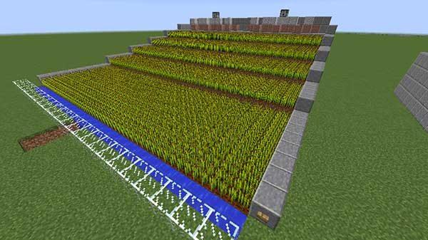 五段式小麦自動収穫装置