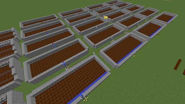 実験用の畑