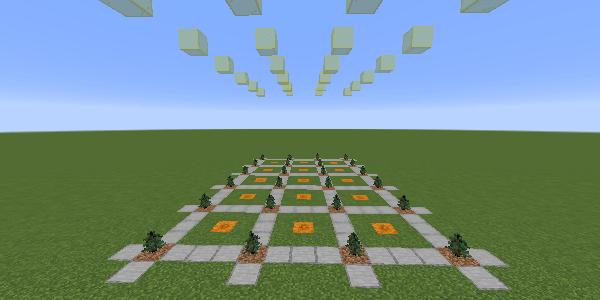 マツの植林場