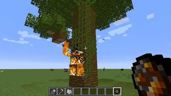 燃えるジャングルの木
