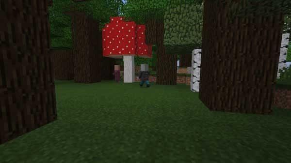 館の外まで村人を追いかけるヴィンディケーター