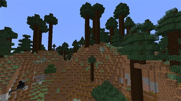 巨大樹のタイガの丘陵