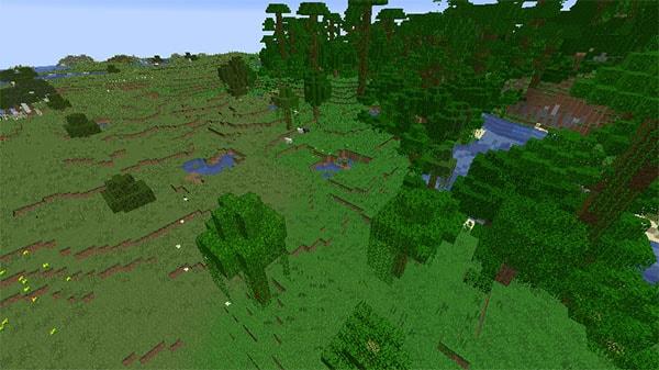 ジャングルの端