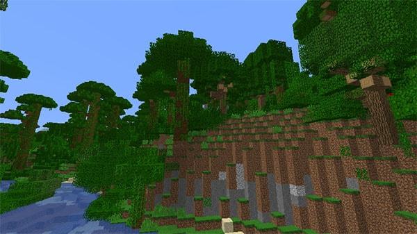 ジャングルの丘陵