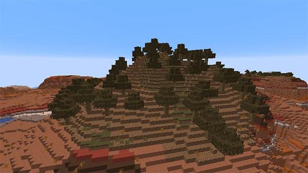 変異した木の生えた荒野の高原