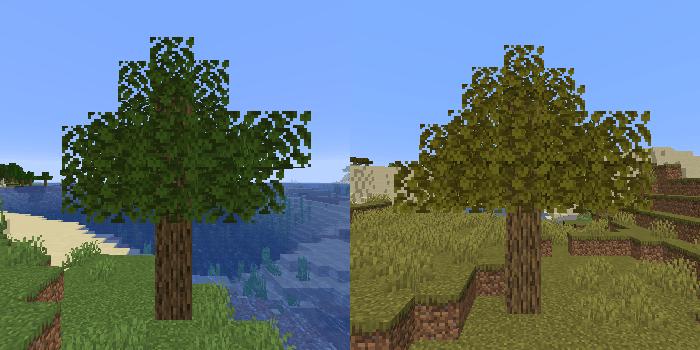 草原とサバンナのオークの木