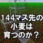 144マス先の小麦は育つのか!?時間凍結の範囲を調べてみました