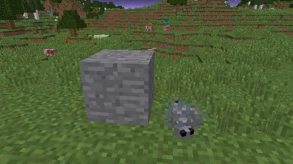 シルバーフィッシュとシルバーフィッシュ入りの石