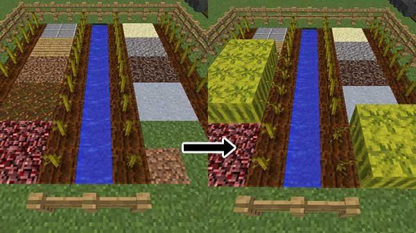 スイカの実がなるブロック