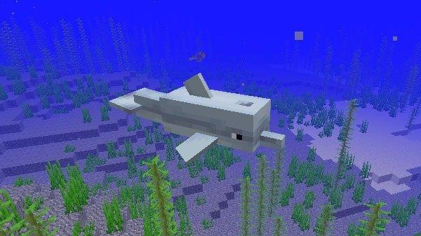 海を泳ぐイルカ