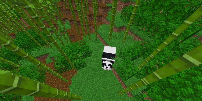 竹林とパンダ