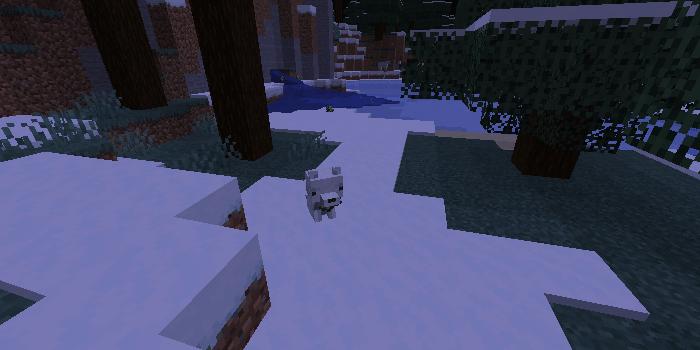 雪のタイガのキツネ