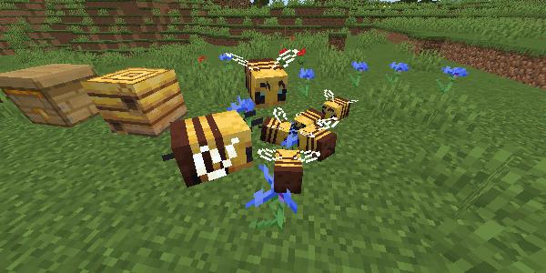 花に群がるミツバチ