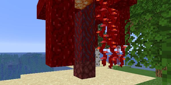 オーバーワールドで成長した真紅のキノコ