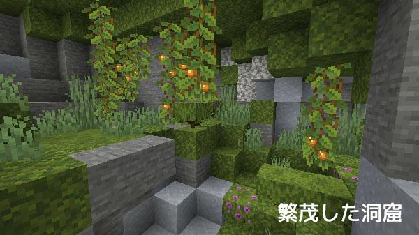 繁茂した洞窟